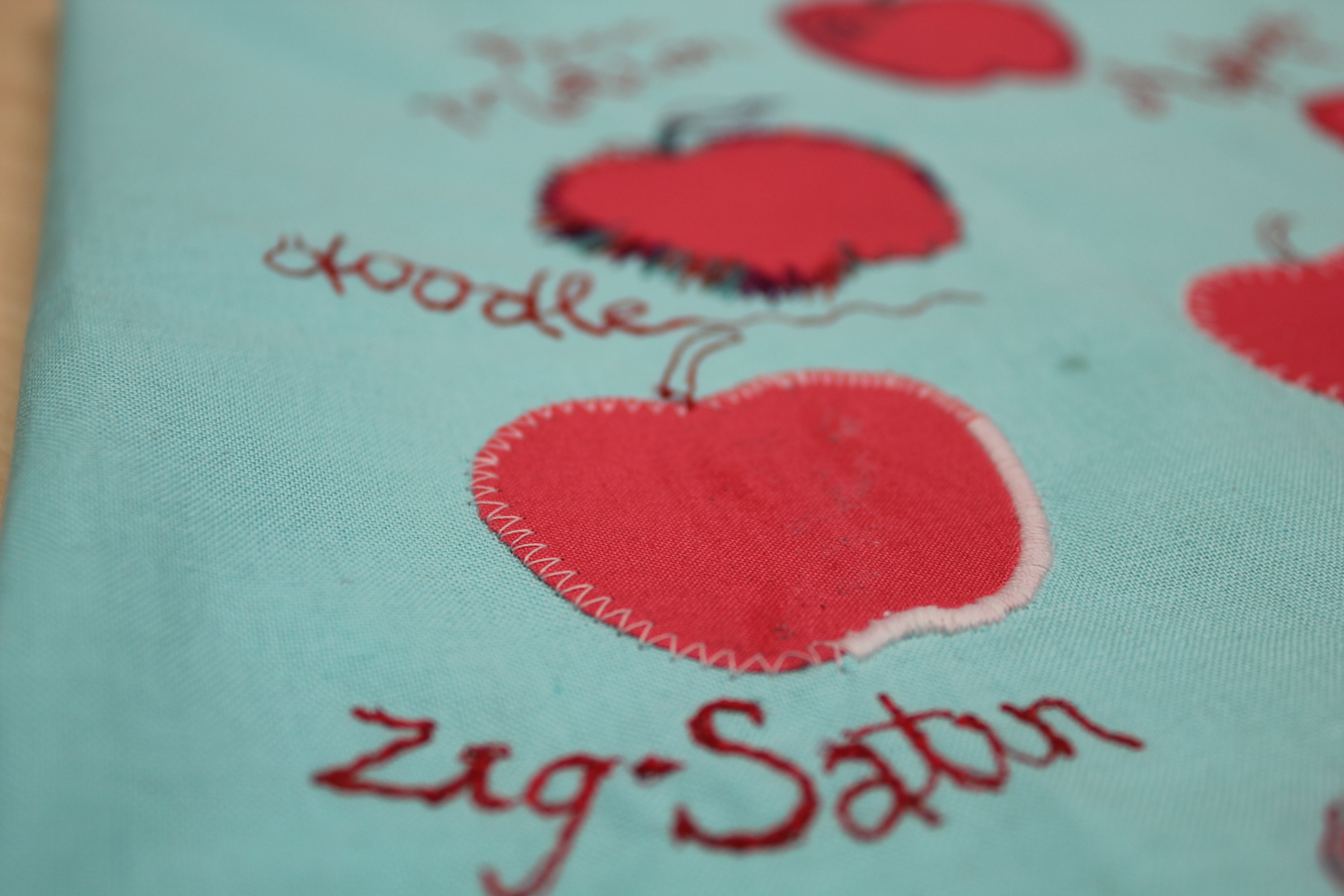 Applique of the day janome life