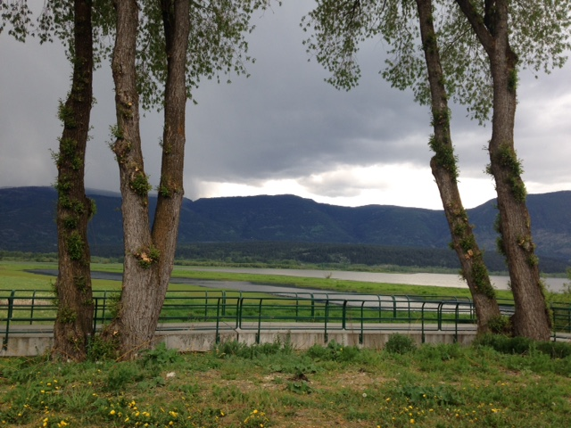 Yes, we did get a teeny bit of rain that afternoon but it was such a beautiful setting, I just had to share: just a tiny part of Shuswap Lake on the edge of the town of salmon Arm,BC.