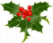 holly image